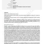 Spain vs. Borex, February 2011, National Court case nr. 80-2008